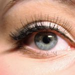 False Eye Lash